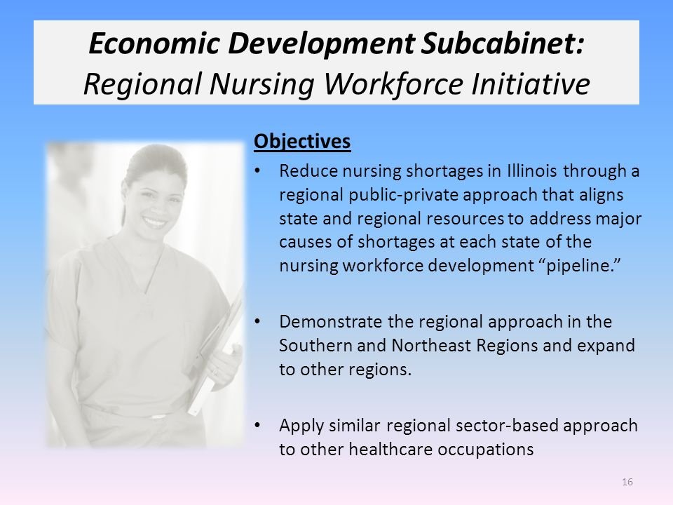 Economic Development Subcabinet: Regional Nursing Workforce Initiative Objectives Reduce nursing shortages in Illinois through a regional public-private approach that aligns state and regional resources to address major causes of shortages at each state of the nursing workforce development pipeline.
