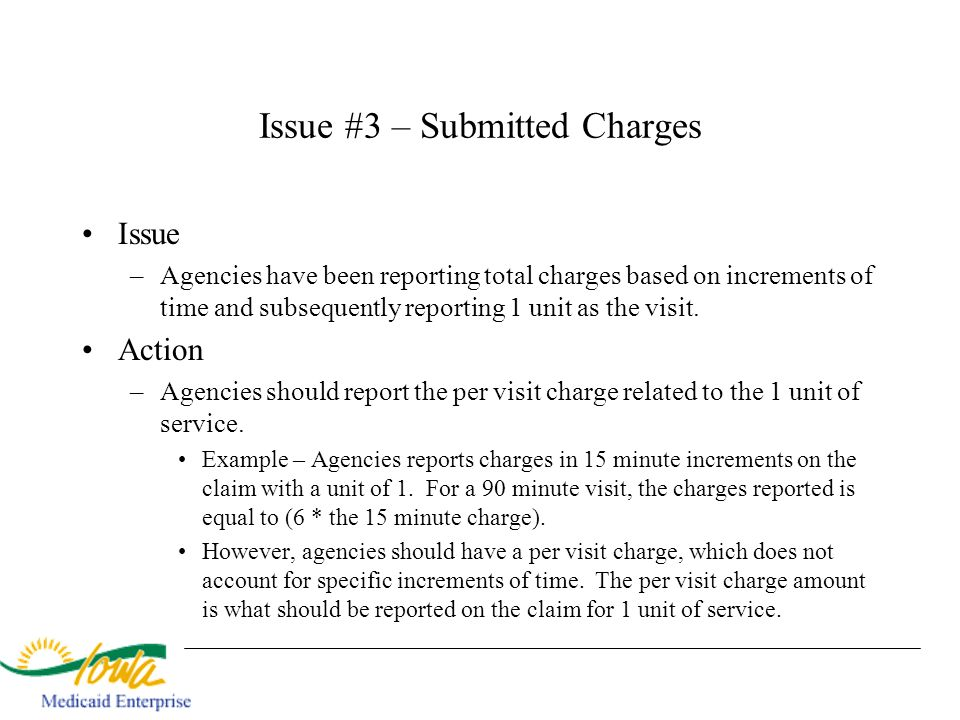 Issue #3 – Submitted Charges Issue –Agencies have been reporting total charges based on increments of time and subsequently reporting 1 unit as the vi