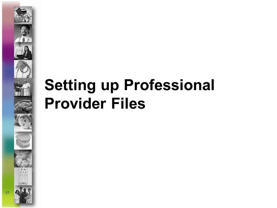 17 Setting up Professional Provider Files