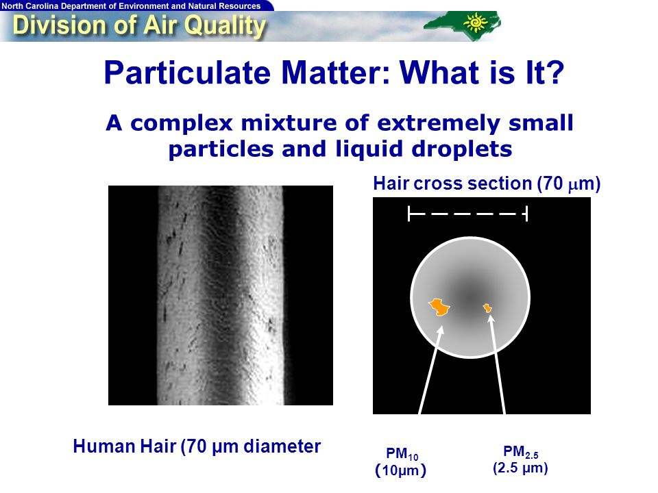 Human Hair (70 µm diameter) Hair cross section (70 m) PM 2.5 (2.5 µm) PM 10 ( 10µm ) M. Lipsett, California Office of Environmental Health Hazard Asse