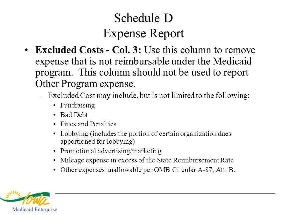 Schedule D Expense Report Excluded Costs - Col.