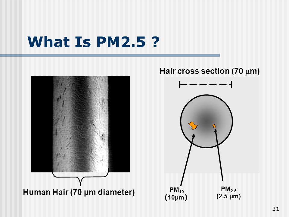31 What Is PM2.5 ? Human Hair (70 µm diameter) Hair cross section (70 m) PM 2.5 (2.5 µm) PM 10 ( 10µm )