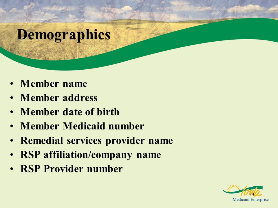 13 Demographics Member name Member address Member date of birth Member Medicaid number Remedial services provider name RSP affiliation/company name RS