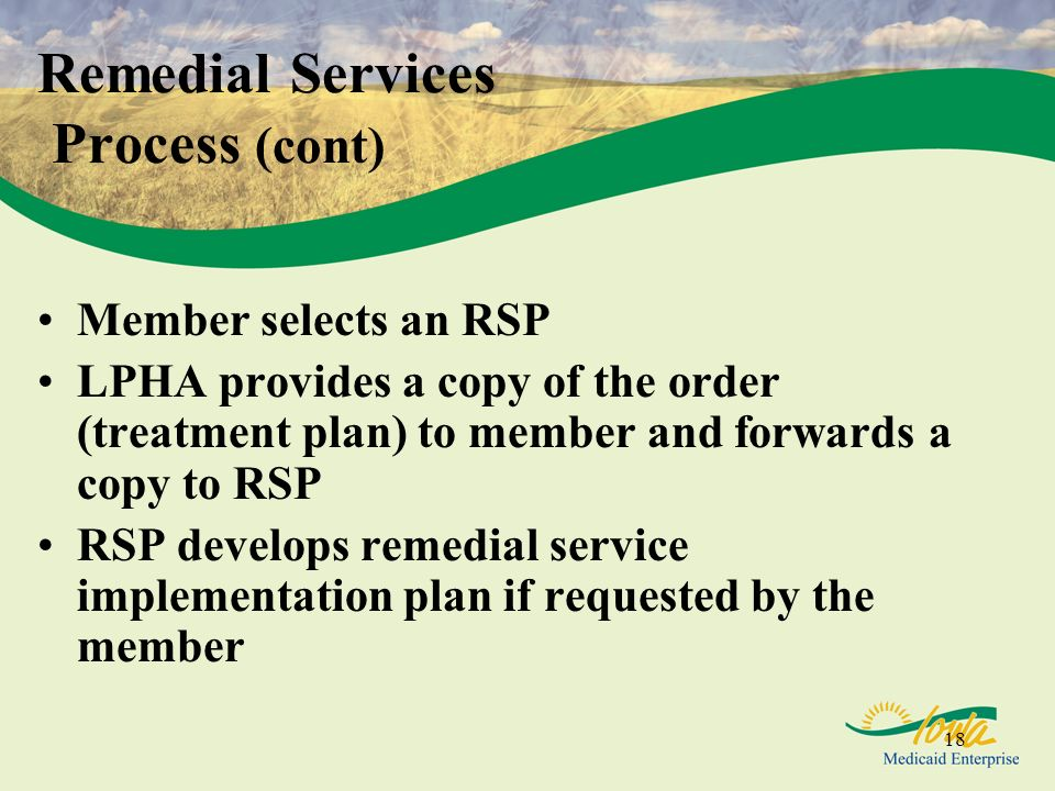 18 Member selects an RSP LPHA provides a copy of the order (treatment plan) to member and forwards a copy to RSP RSP develops remedial service implementation plan if requested by the member Remedial Services Process (cont)