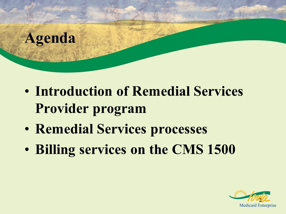 2 Agenda Introduction of Remedial Services Provider program Remedial Services processes Billing services on the CMS 1500