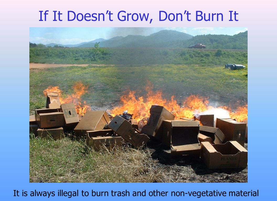 If It Doesnt Grow, Dont Burn It It is always illegal to burn trash and other non-vegetative material