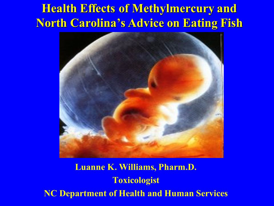 Health Effects of Methylmercury and North Carolinas Advice on Eating Fish Luanne K. Williams, Pharm.D. Toxicologist NC Department of Health and Human
