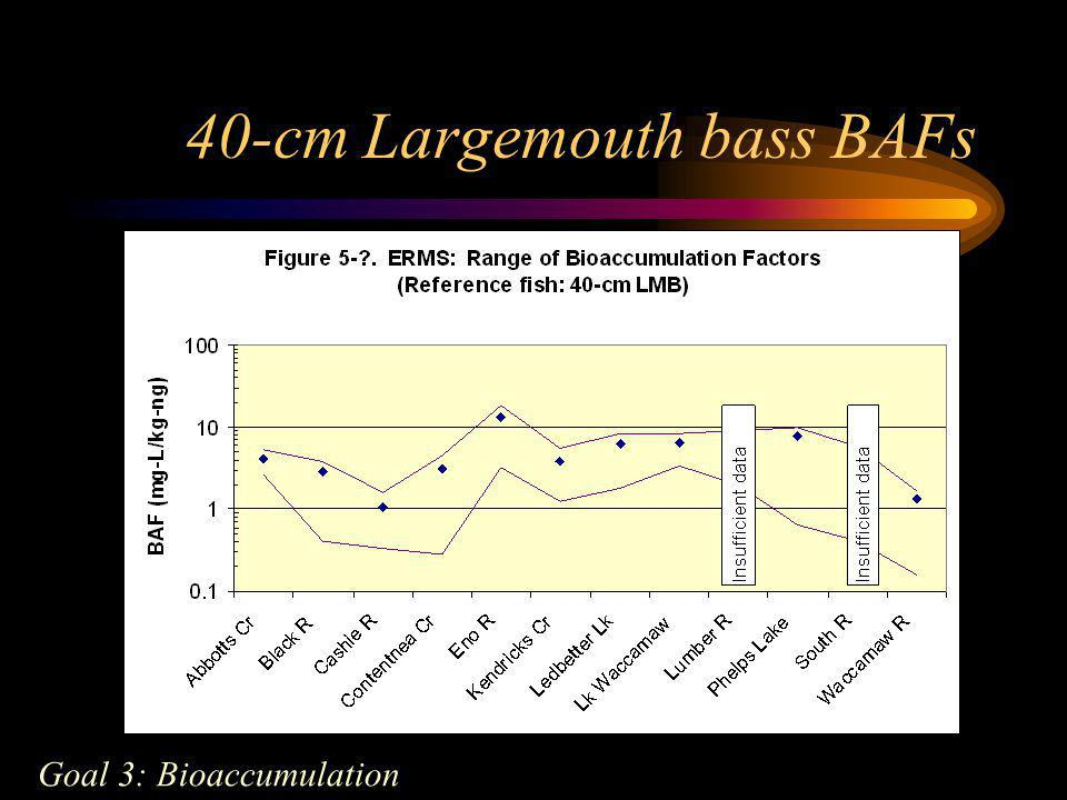 40-cm Largemouth bass BAFs Goal 3: Bioaccumulation