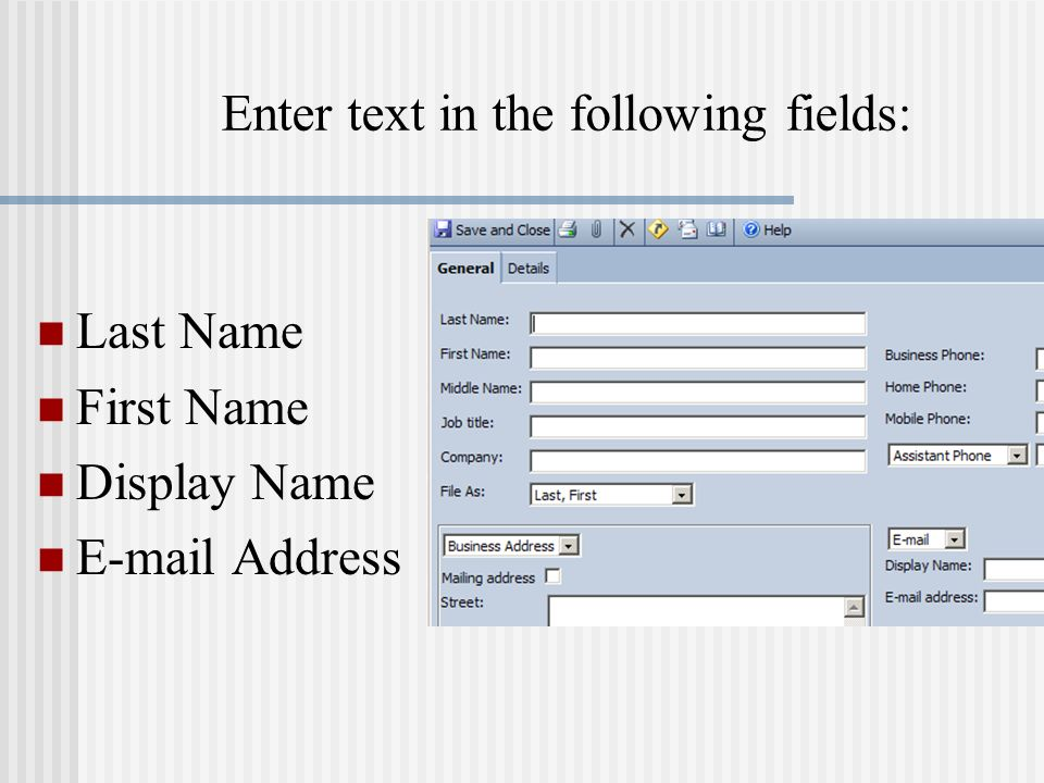 Enter text in the following fields: Last Name First Name Display Name E-mail Address