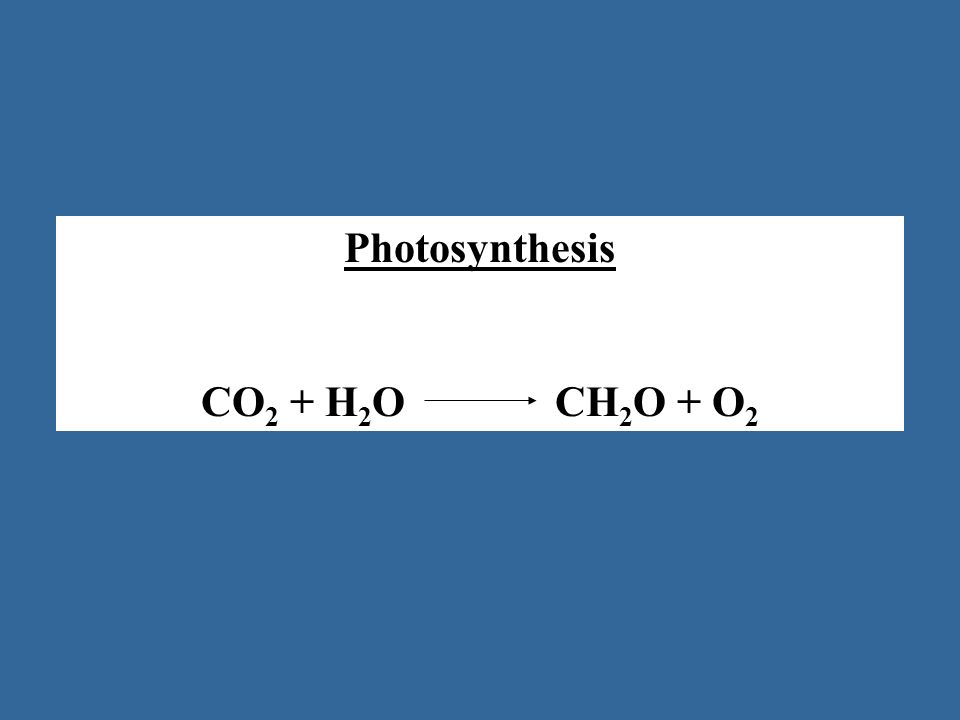 Photosynthesis CO 2 + H 2 O CH 2 O + O 2