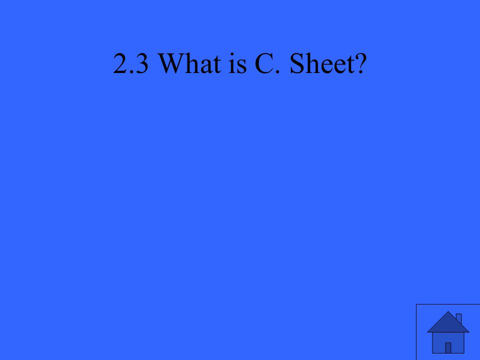2.3 What is C. Sheet?
