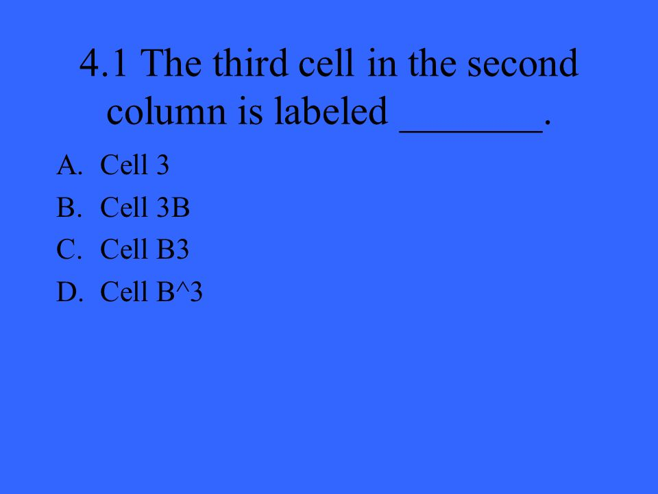 4.1 The third cell in the second column is labeled _______. A.Cell 3 B.Cell 3B C.Cell B3 D.Cell B^3