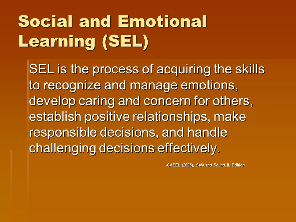 Social and Emotional Learning (SEL) SEL is the process of acquiring the skills to recognize and manage emotions, develop caring and concern for others