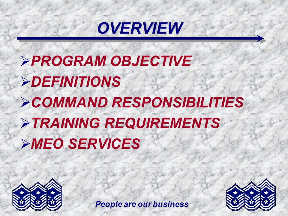 People are our business PROGRAM OBJECTIVE To improve mission effectiveness by promoting an environment free from personal, social, or institutional barriers that prevent Air Force members from rising to the highest level of responsibility possible based on their individual merit, fitness, and capability.