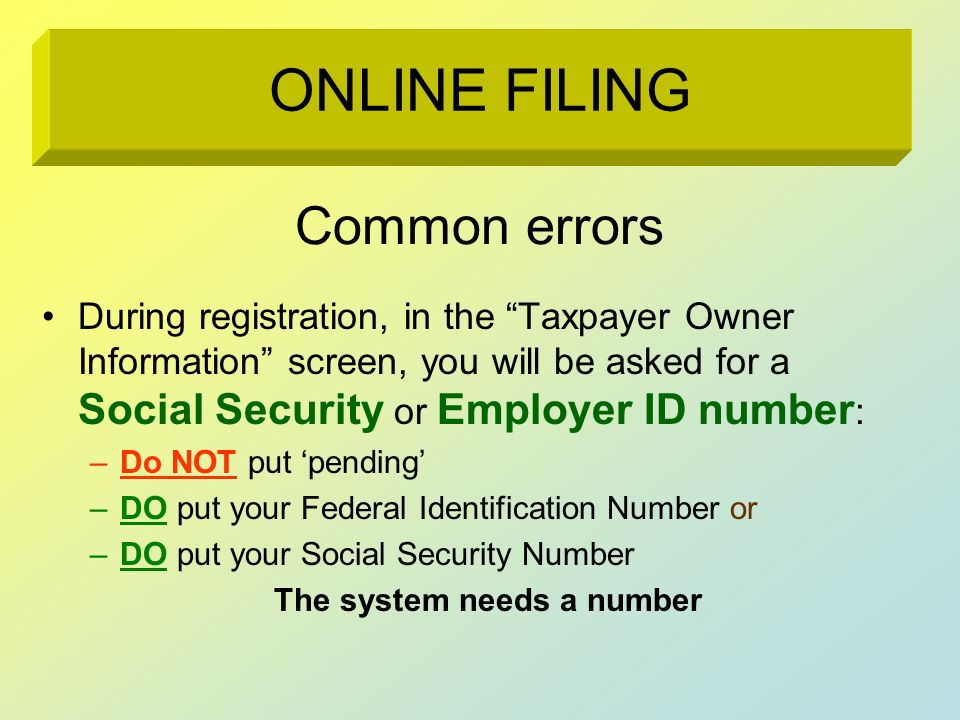 Common errors During registration, in the Taxpayer Owner Information screen, you will be asked for a Social Security or Employer ID number : –Do NOT p