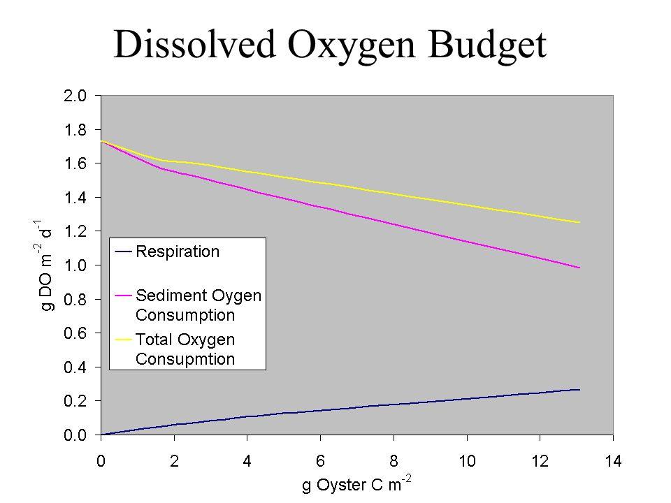 Dissolved Oxygen Budget