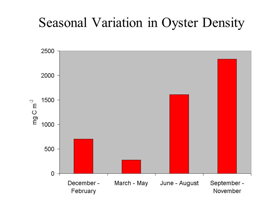 Seasonal Variation in Oyster Density
