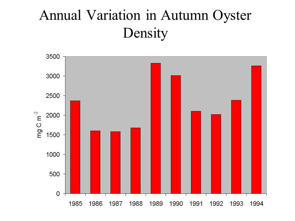 Annual Variation in Autumn Oyster Density
