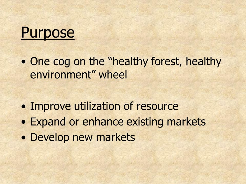 Purpose One cog on the healthy forest, healthy environment wheel Improve utilization of resource Expand or enhance existing markets Develop new markets