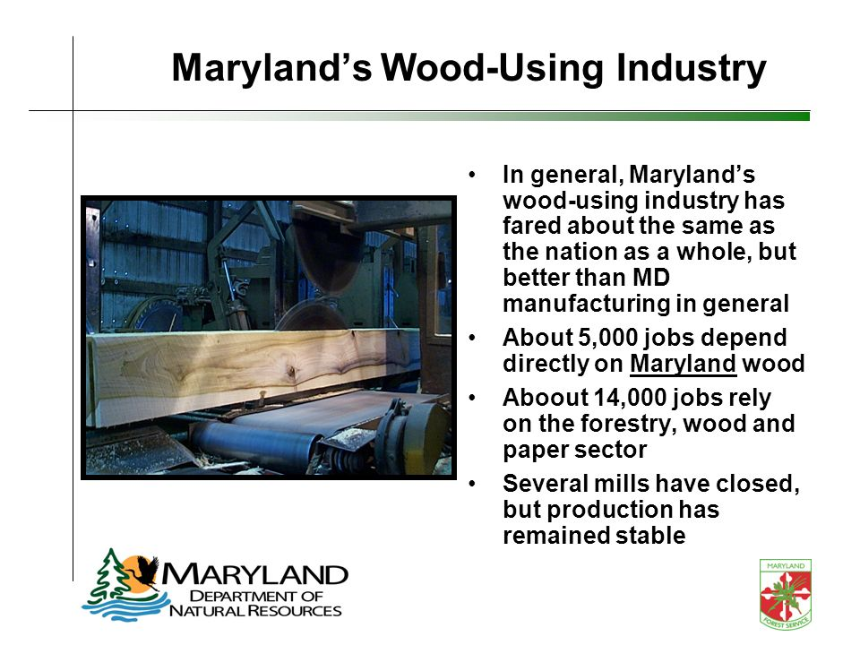 Marylands Wood-Using Industry In general, Marylands wood-using industry has fared about the same as the nation as a whole, but better than MD manufacturing in general About 5,000 jobs depend directly on Maryland wood Aboout 14,000 jobs rely on the forestry, wood and paper sector Several mills have closed, but production has remained stable