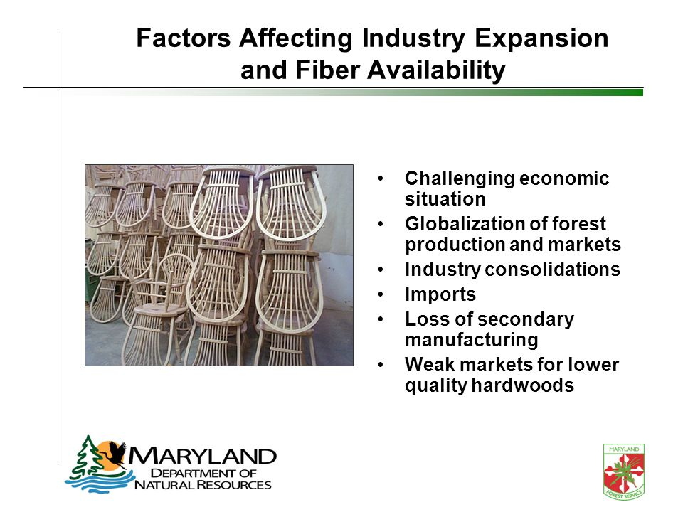 Factors Affecting Industry Expansion and Fiber Availability Challenging economic situation Globalization of forest production and markets Industry consolidations Imports Loss of secondary manufacturing Weak markets for lower quality hardwoods