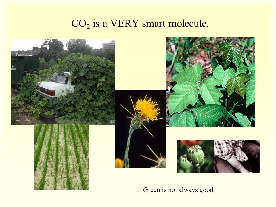 CO 2 is a VERY smart molecule. Green is not always good.