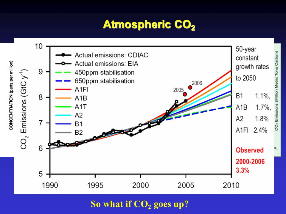 Atmospheric CO 2 So what if CO 2 goes up?