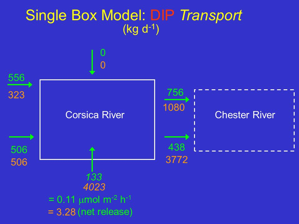 Single Box Model: DIP Transport 0 556 506 756 438 Chester RiverCorsica River 133 = 0.11 mol m -2 h -1 (net release) 0 323 506 1080 3772 = 3.28 4023 (k