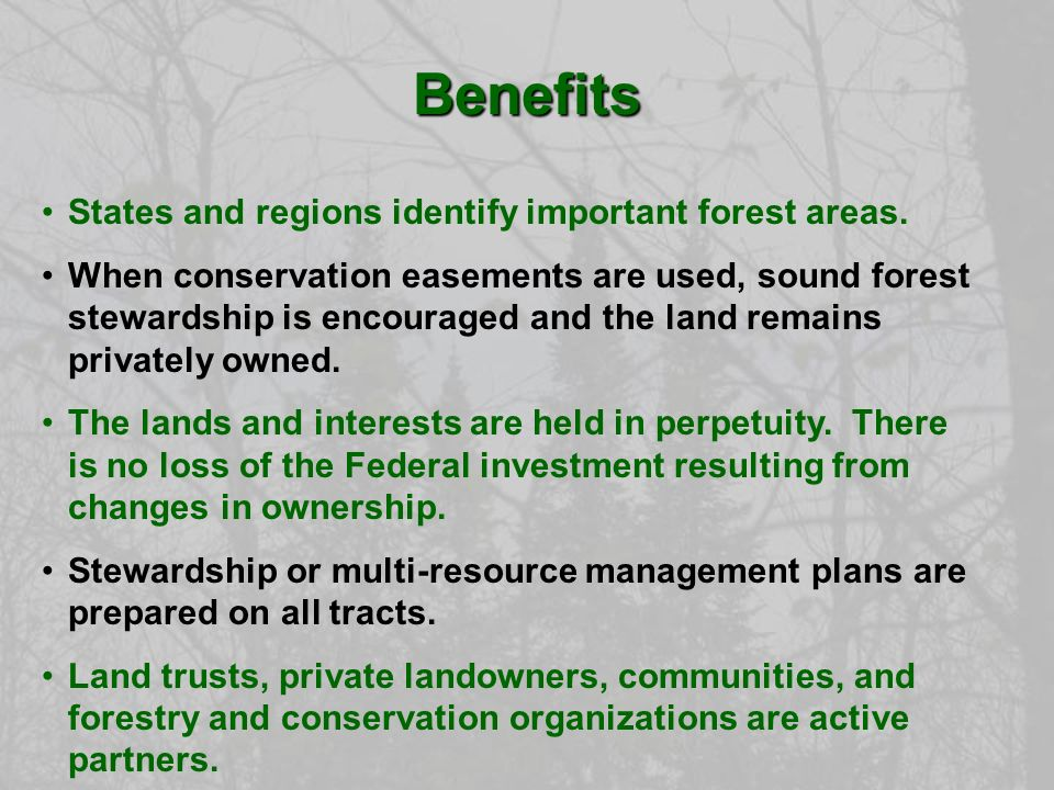 States and regions identify important forest areas.