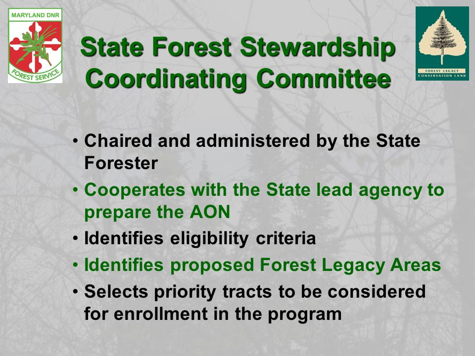 State Forest Stewardship Coordinating Committee Chaired and administered by the State Forester Cooperates with the State lead agency to prepare the AON Identifies eligibility criteria Identifies proposed Forest Legacy Areas Selects priority tracts to be considered for enrollment in the program