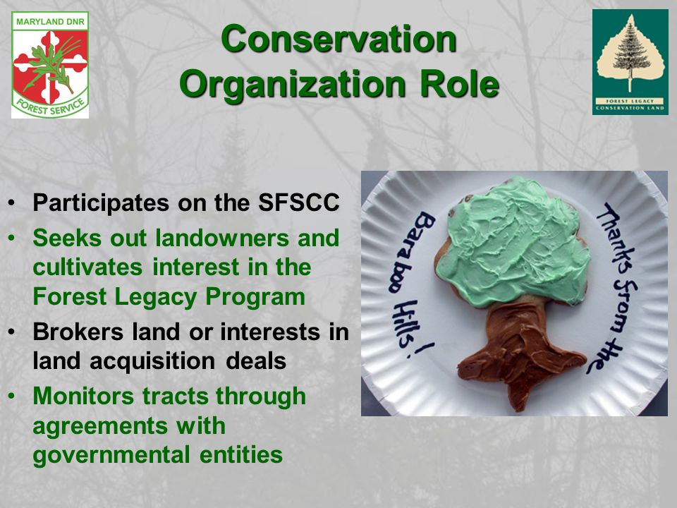 Conservation Organization Role Participates on the SFSCC Seeks out landowners and cultivates interest in the Forest Legacy Program Brokers land or interests in land acquisition deals Monitors tracts through agreements with governmental entities