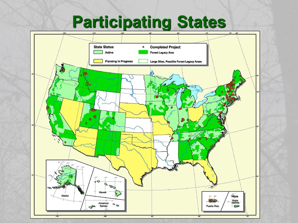 Monitoring and Enforcement States agree to monitor Forest Legacy tracts upon joining the program.