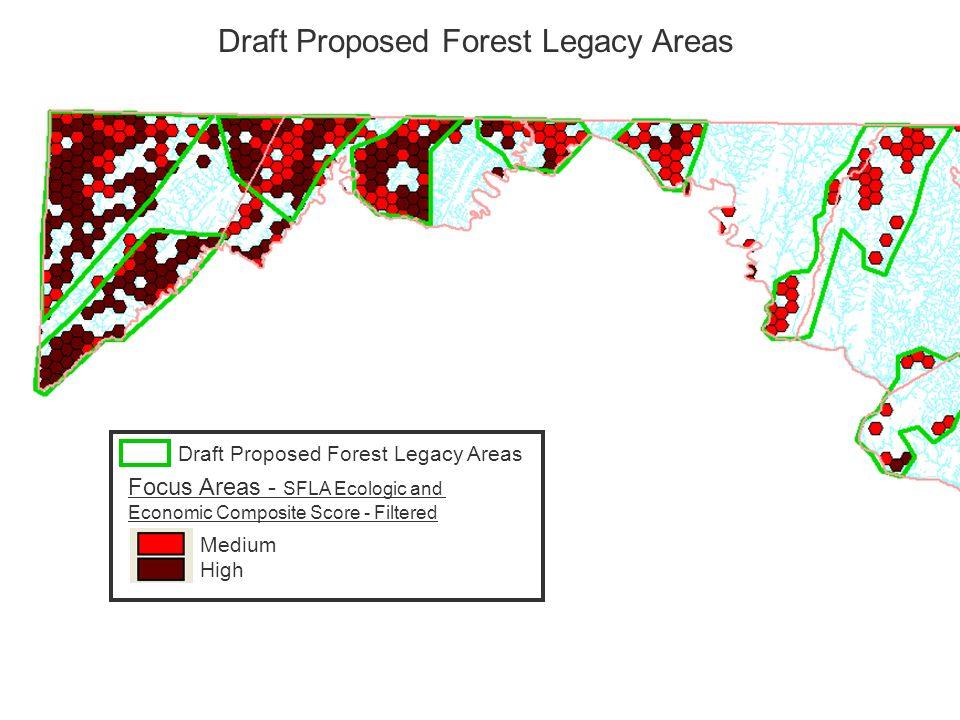 Focus Areas - SFLA Ecologic and Economic Composite Score - Filtered Medium High