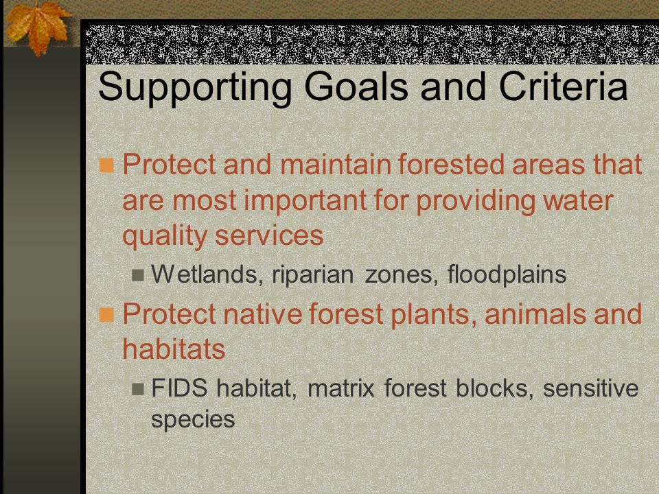 Supporting Goals and Criteria Protect and maintain forested areas that are most important for providing water quality services Wetlands, riparian zones, floodplains Protect native forest plants, animals and habitats FIDS habitat, matrix forest blocks, sensitive species