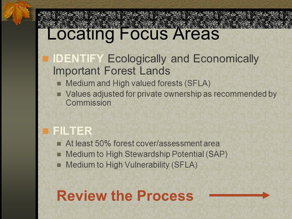 Locating Focus Areas IDENTIFY Ecologically and Economically Important Forest Lands Medium and High valued forests (SFLA) Values adjusted for private o