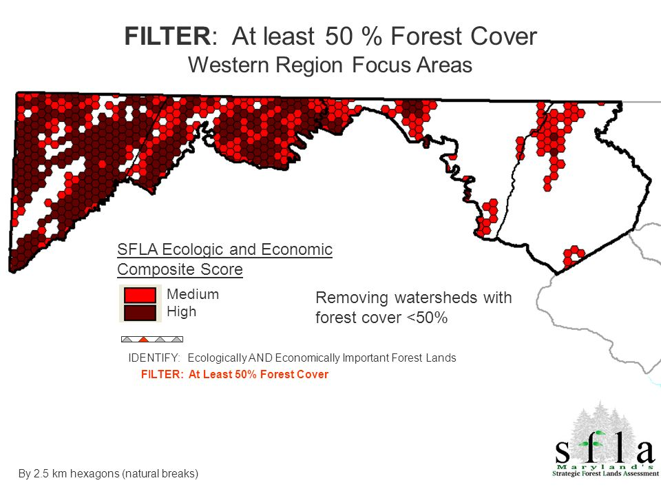 SFLA Ecologic and Economic Composite Score Medium High Removing watersheds with forest cover <50% FILTER: At least 50 % Forest Cover Western Region Focus Areas By 2.5 km hexagons (natural breaks) IDENTIFY: Ecologically AND Economically Important Forest Lands FILTER: At Least 50% Forest Cover