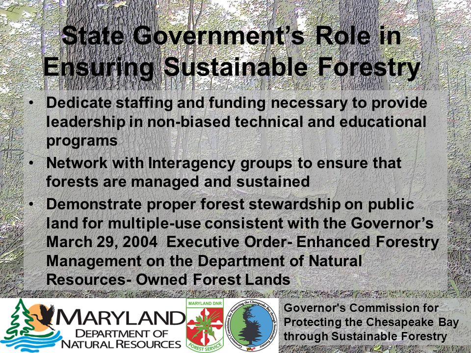 Governor s Commission for Protecting the Chesapeake Bay through Sustainable Forestry State Governments Role in Ensuring Sustainable Forestry Dedicate staffing and funding necessary to provide leadership in non-biased technical and educational programs Network with Interagency groups to ensure that forests are managed and sustained Demonstrate proper forest stewardship on public land for multiple-use consistent with the Governors March 29, 2004 Executive Order- Enhanced Forestry Management on the Department of Natural Resources- Owned Forest Lands