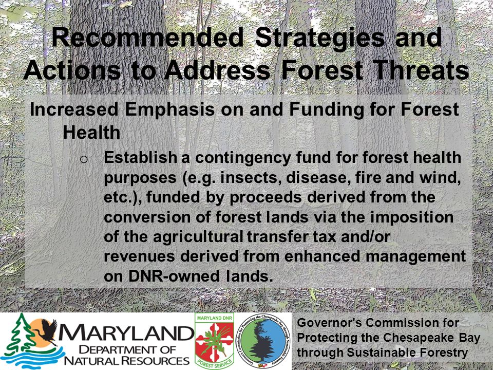 Governor's Commission for Protecting the Chesapeake Bay through Sustainable Forestry Recommended Strategies and Actions to Address Forest Threats Incr