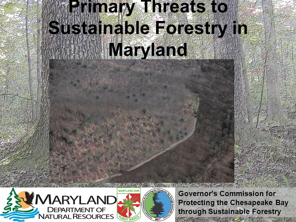 Governor s Commission for Protecting the Chesapeake Bay through Sustainable Forestry Primary Threats to Sustainable Forestry in Maryland Development of forests due to uninformed local land use decisions Lack of public education and awareness Loss of Forest Health Lack of Comparable Public Financial Incentives