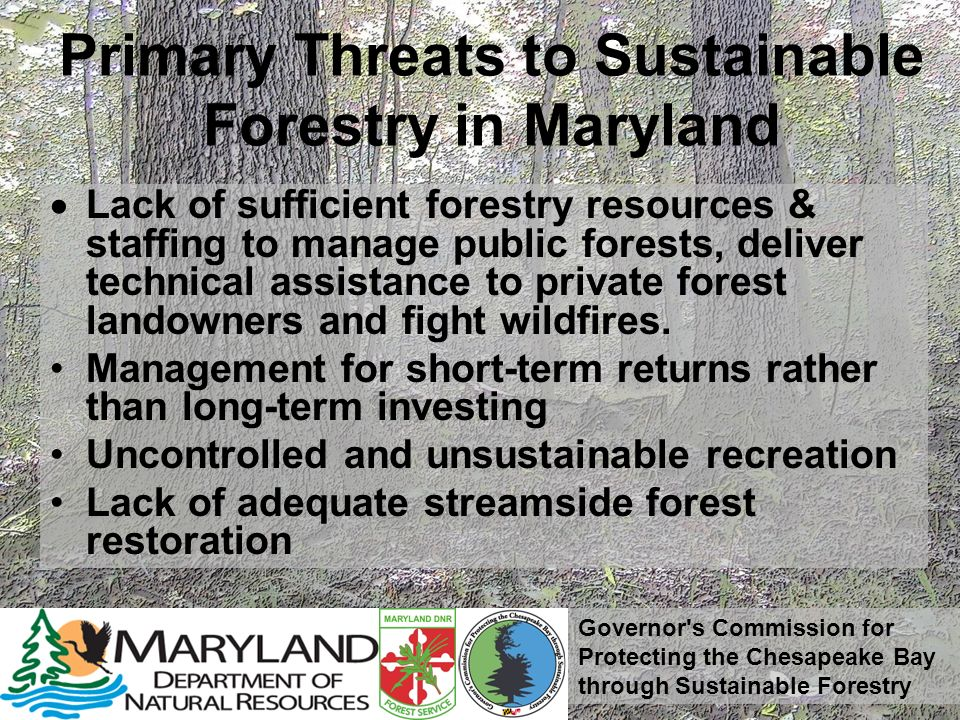 Governor s Commission for Protecting the Chesapeake Bay through Sustainable Forestry Primary Threats to Sustainable Forestry in Maryland Lack of sufficient forestry resources & staffing to manage public forests, deliver technical assistance to private forest landowners and fight wildfires.
