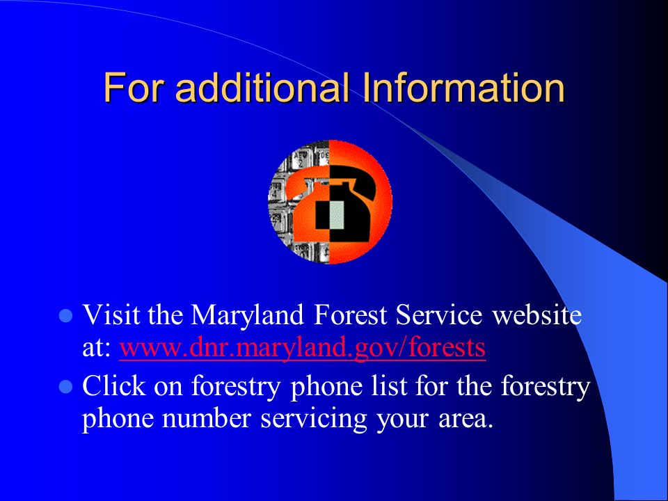 For additional Information Visit the Maryland Forest Service website at: www.dnr.maryland.gov/forestswww.dnr.maryland.gov/forests Click on forestry ph