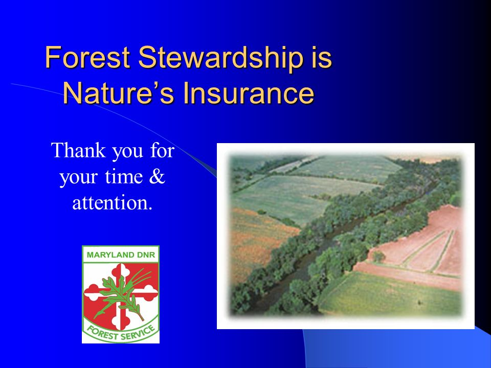 Forest Stewardship is Natures Insurance Thank you for your time & attention.