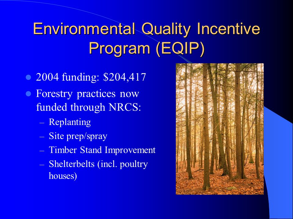 Environmental Quality Incentive Program (EQIP) 2004 funding: $204,417 Forestry practices now funded through NRCS: – Replanting – Site prep/spray – Tim
