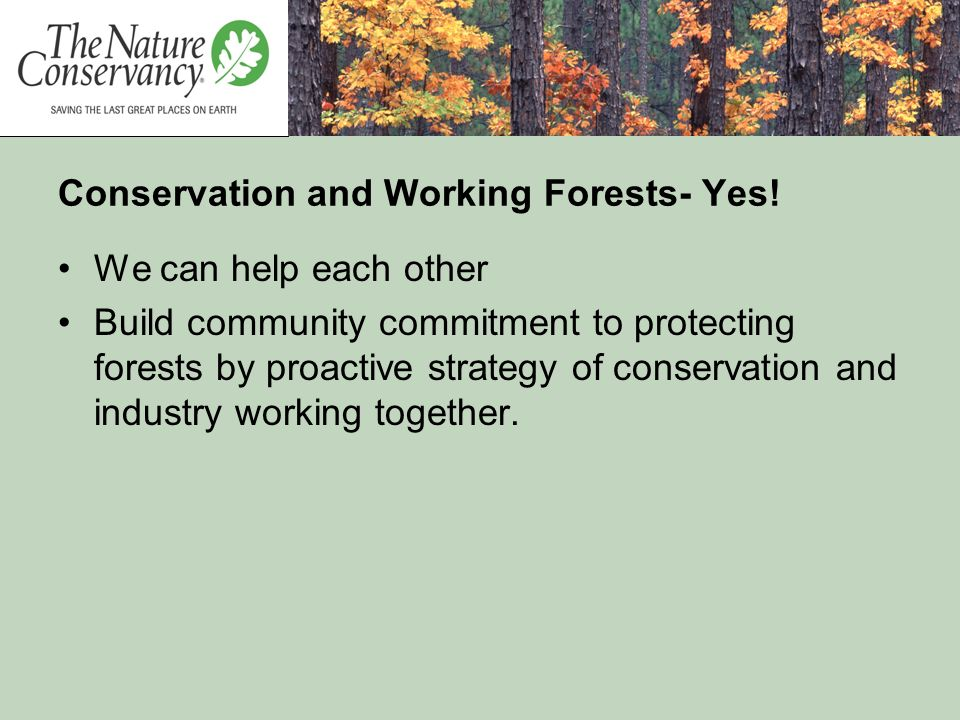 Conservation and Working Forests- Yes! We can help each other Build community commitment to protecting forests by proactive strategy of conservation a
