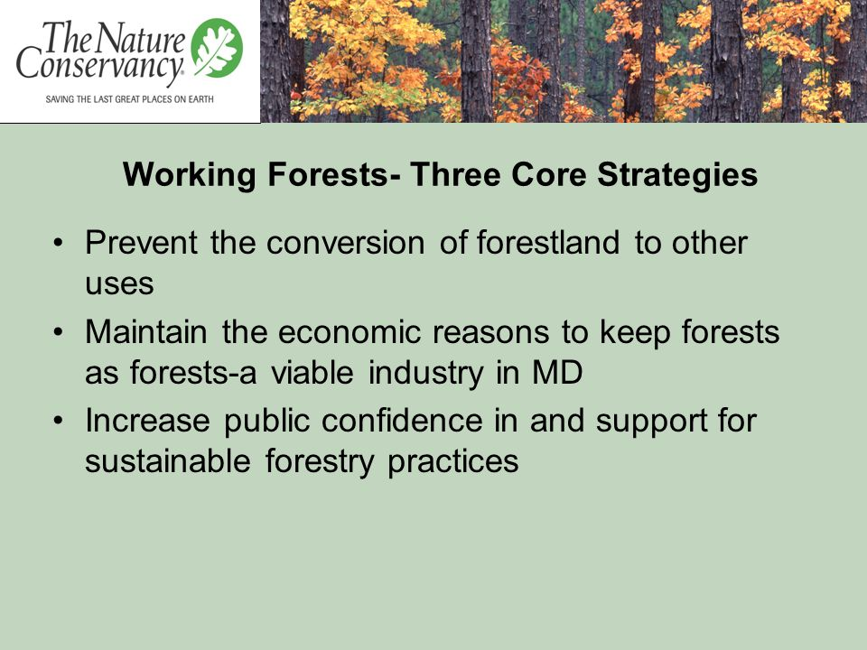 Working Forests- Three Core Strategies Prevent the conversion of forestland to other uses Maintain the economic reasons to keep forests as forests-a v