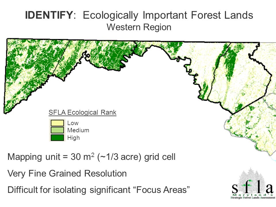 SFLA Ecological Rank Low Medium High Mapping unit = 30 m 2 (~1/3 acre) grid cell Very Fine Grained Resolution Difficult for isolating significant Focu