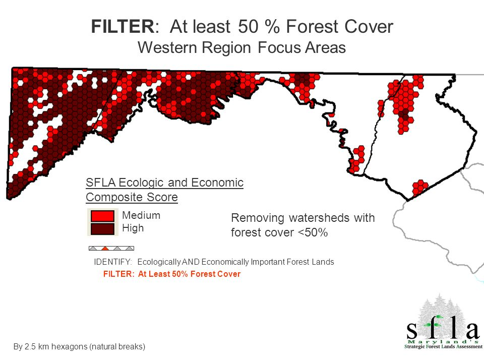 SFLA Ecologic and Economic Composite Score Medium High Removing watersheds with forest cover <50% FILTER: At least 50 % Forest Cover Western Region Fo