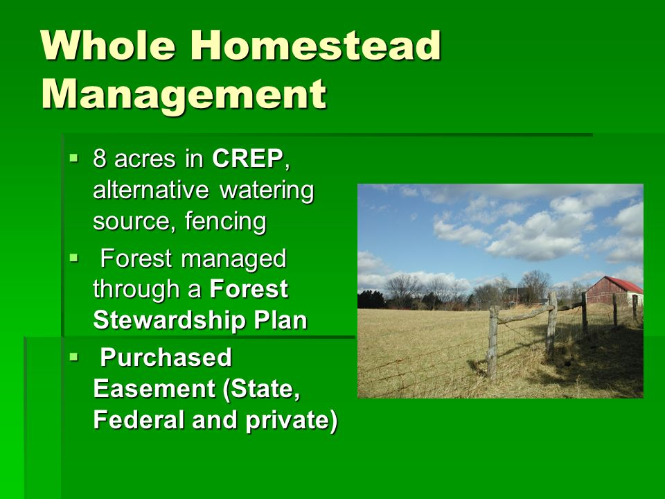 Whole Homestead Management 8 acres in CREP, alternative watering source, fencing 8 acres in CREP, alternative watering source, fencing Forest managed