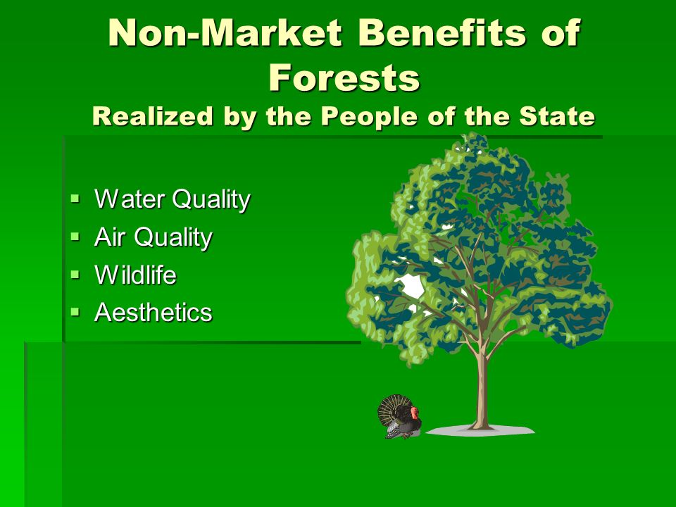 Non-Market Benefits of Forests Realized by the People of the State Water Quality Water Quality Air Quality Air Quality Wildlife Wildlife Aesthetics Aesthetics