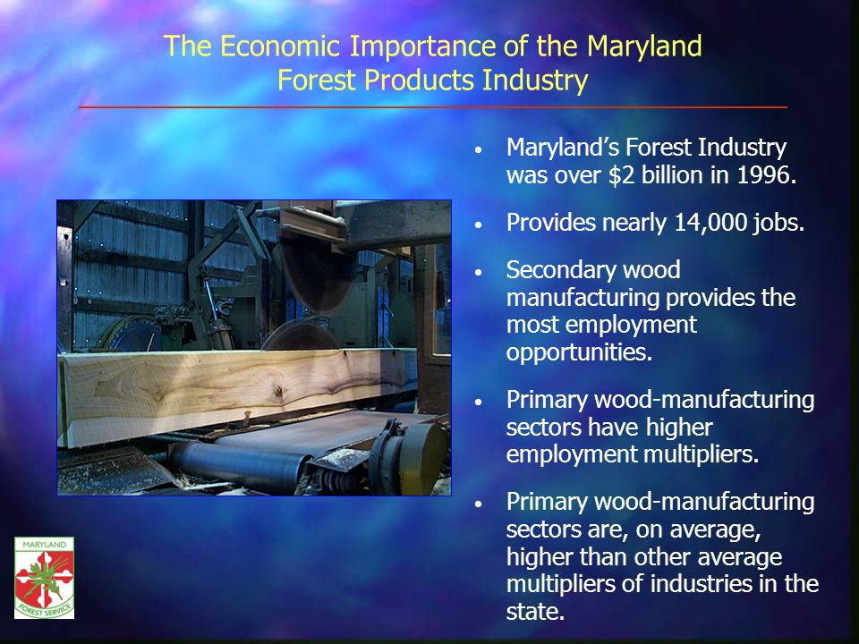 The Economic Importance of the Maryland Forest Products Industry Marylands Forest Industry was over $2 billion in 1996.